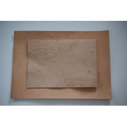 Телешки бланк растително дъбен 3.2 мм, A3